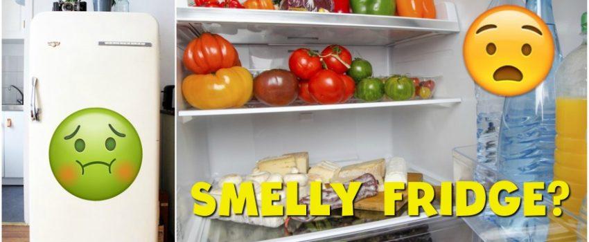 smelly-fridge-og-image-2